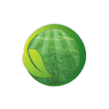 Green Lawn Icon On Home Page