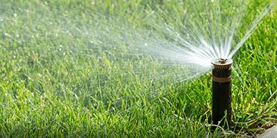 new irrigation system